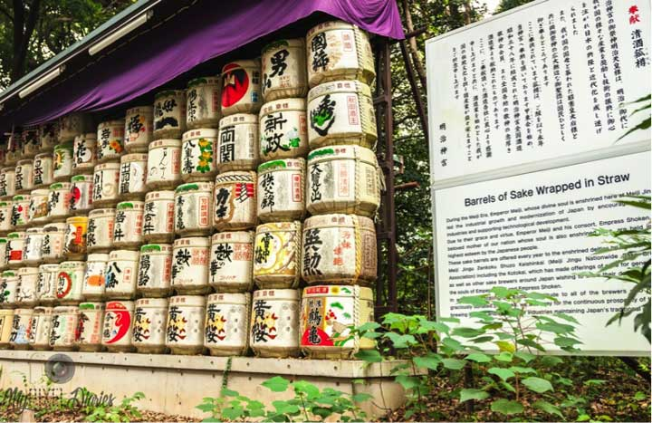 shrine sake barrels